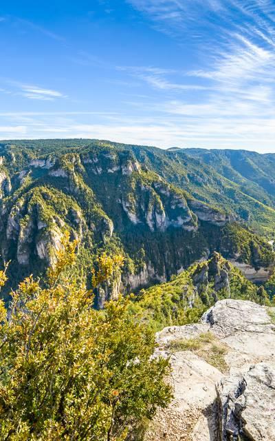 Carte touristique 2020 de l'Office de Tourisme de l'Aubrac aux Gorges du Tarn