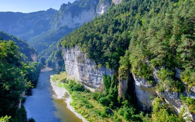 Falaises des Gorges du Tarn en Lozère.