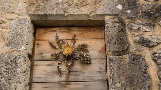 Une cardabelle sur une maison caussenarde.