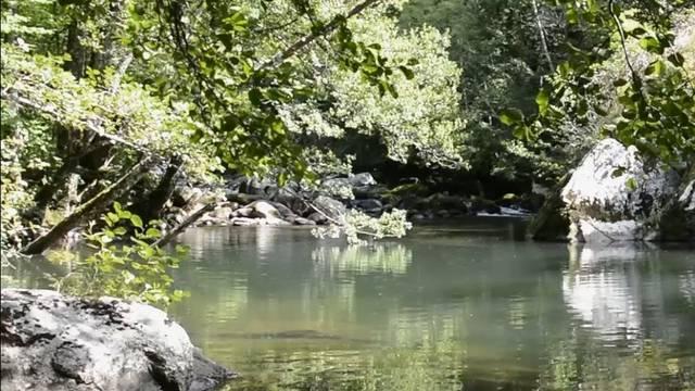 Le Lot et l'Urugne sont deux cours d'eaux préservés.