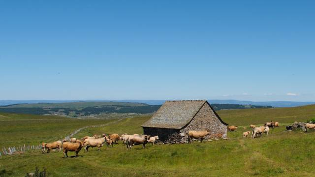 The burons - Moutain Pasture Huts