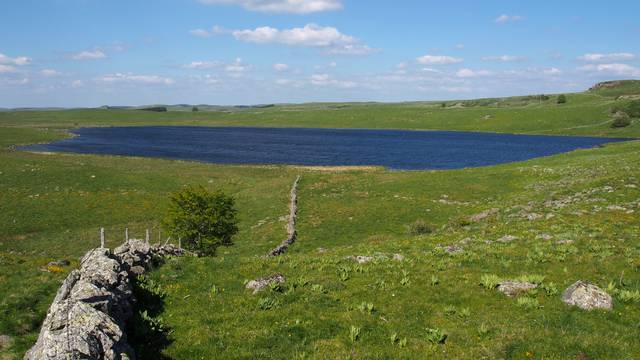an Aubrac Moutain's Lake