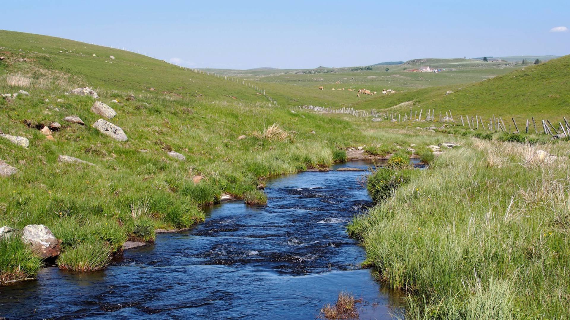 Un boralde serpentant à travers le plateau.