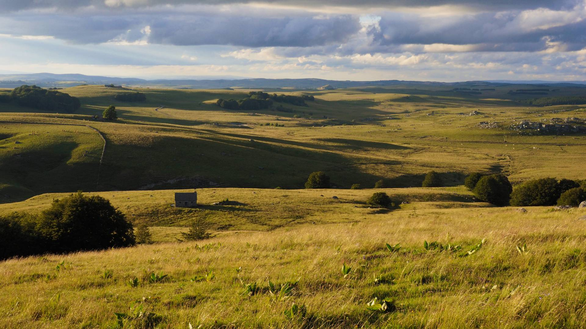 Aubrac mountain landscape.