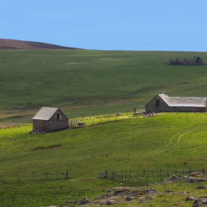 Paysage de l'Aubrac (photo : Robert Palmier)
